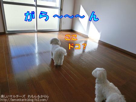 20140914_1.jpg