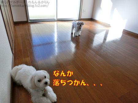 20140914_3.jpg
