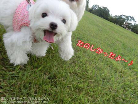 20140919_11.jpg