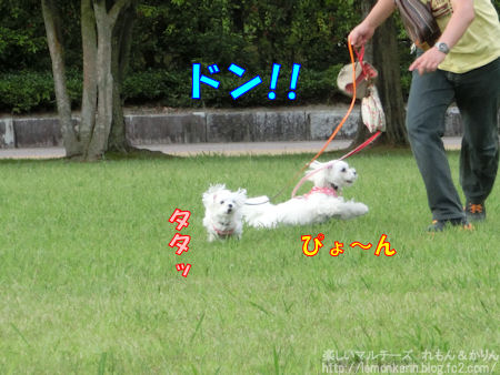 20140919_4.jpg