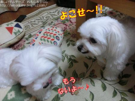 20140924_10.jpg