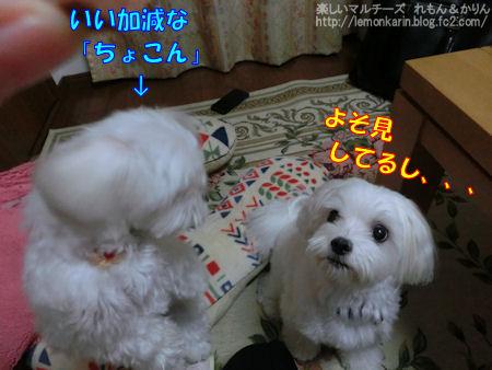 20140924_6.jpg