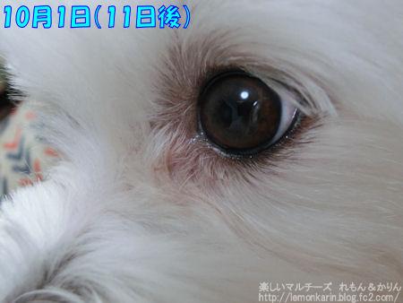 20141001_2.jpg