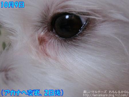 20141012_11.jpg