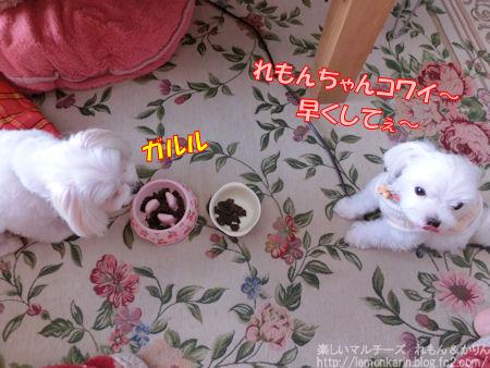 20141017_6.jpg
