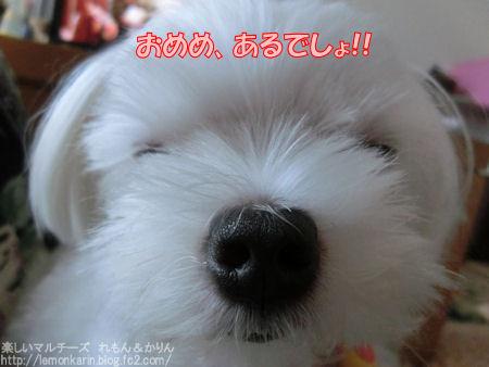 20141025_7.jpg