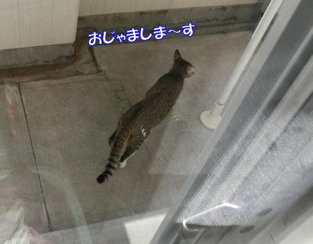 20141028_8.jpg