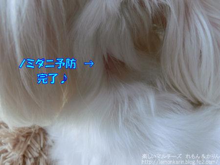 20141104_2.jpg