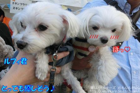 20141104_7.jpg