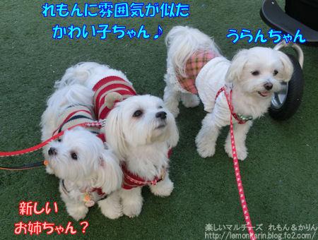 20141104_9.jpg