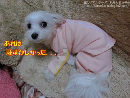20141109_6.jpg