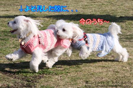 20141117_7.jpg