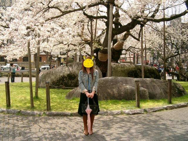 4月30日石割桜014a