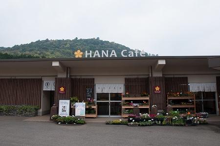 ハナカフェ