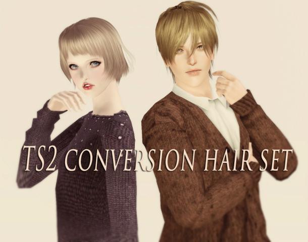ts2conversionhairsss (2)