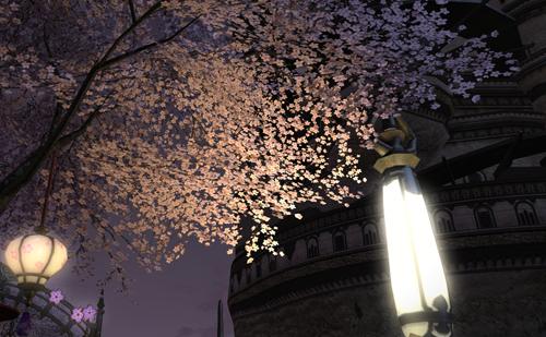 夜の景色もきれいです