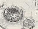 スープハンバーグ包みチャーハン図