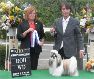 blog-4-27raoh-bob.jpg