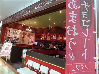 キャッツカフェのお店の外観