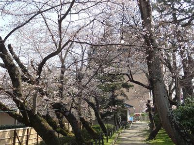 岡崎公園4