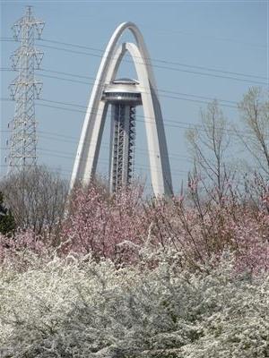 木曽川堤5