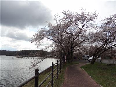 松原湖付近