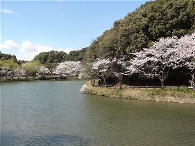 定光寺公園1