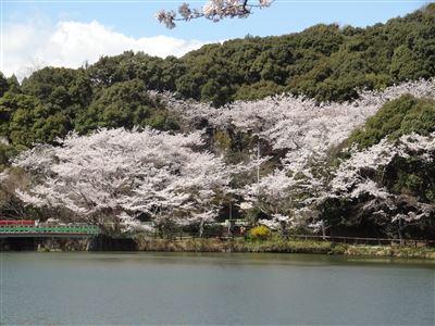 定光寺公園2