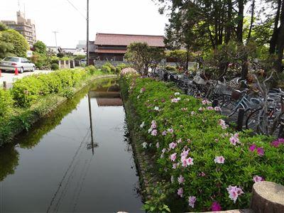 浅野公園3