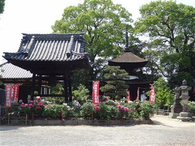 稲沢市 万徳寺1