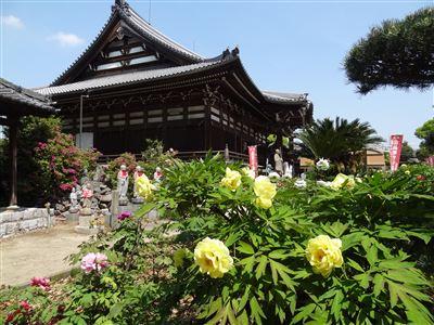 稲沢市 万徳寺3