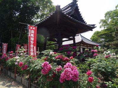 稲沢市 万徳寺4