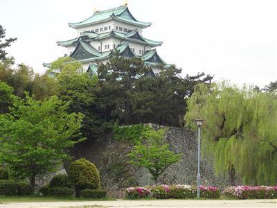 名城公園 藤の回廊2