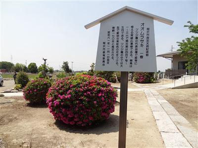 稲沢市 大福寺3