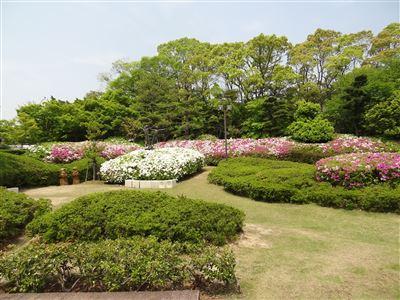 大倉公園5