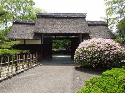 大倉公園4