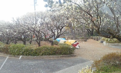 梅林公園2