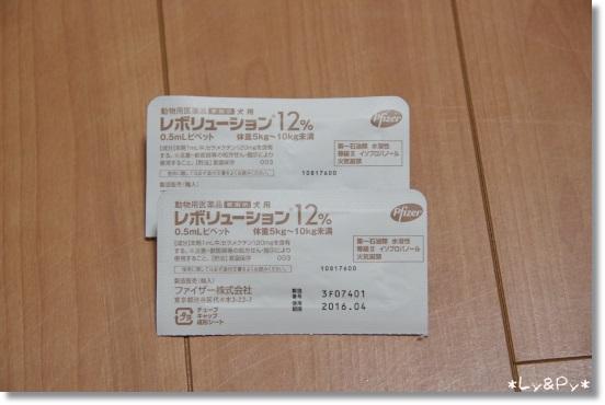 IMGP2558[1]