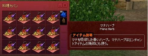mabinogi_2014_06_01_003.jpg