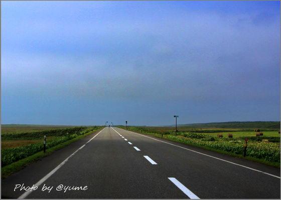 b-IMG_9089.jpg