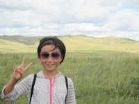 mongol area