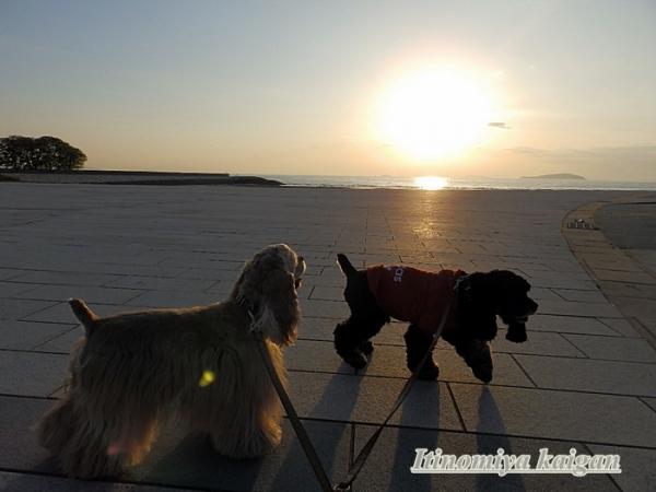 一宮海岸夕陽1