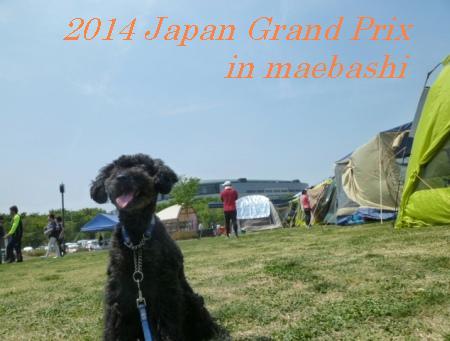 2014ジャパングランプリ