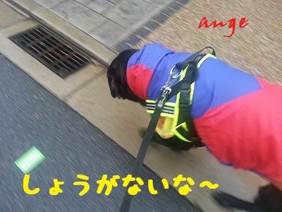 20140227ange3.jpg