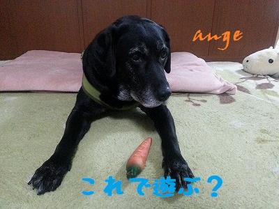 20140326ange6.jpg