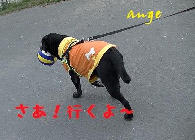20140405ange1.jpg
