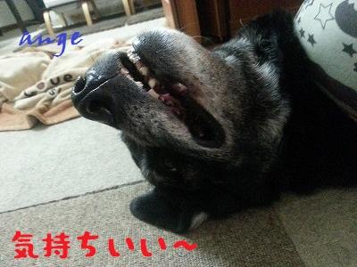 20140621ange5.jpg
