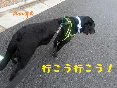 20140714ange2.jpg