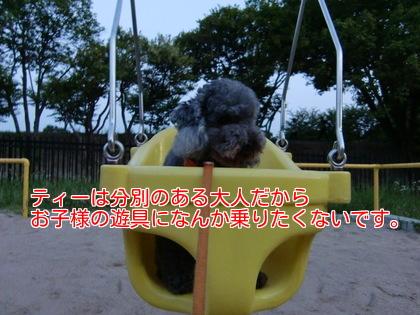 GQUdC3asqPMIoSd1403959766_1403960059.jpg