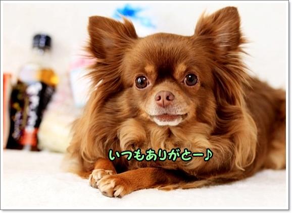 IMG_6678.jpg